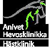 Anivet Hevosklinikka